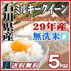 無洗米 5kg ミルキークイーン 石川県産 白米 5kg 平成28年産 送料無料 北海道 沖縄 一部地域を除く