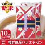 新米 5kg×2袋 10kg お米 白米 ハナエチゼン 福井県産 令和元年産 白米 送料無料一部地域を除く