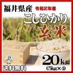 新米 玄米 20kg コシヒカリ 令和2年産 福井県産 10kg×2袋 送料無料