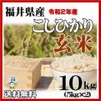 お米10kg 玄米 福井県産コシヒカリ 10kg 29年産 送料無料