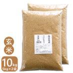 新米 玄米 10kg お米 コシヒカリ 5kg×2袋 令和3年産 福井県産