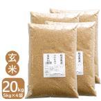 玄米 20kg お米 コシヒカリ 令和2年産 福井県産 5kg×4袋