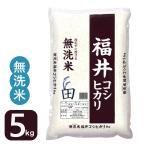 お米 無洗米5kg コシヒカリ 福井県産29年産 白米特A 送料無料