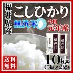 無洗米 10kg コシヒカリ 福井県産 白米 5kg×2袋 特A 平成28年産 送料無料 一部地域を除く