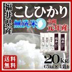 新米コシヒカリ 米 20kg 無洗米 5kg×4袋 特A 令和元年産 送料無料