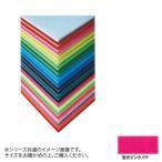 ARTE(アルテ) ニューカラーボード デザインボード 5mm 3×6(900×1800mm) 蛍光ピンク BP-5CB-3x6-FP