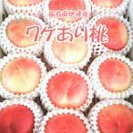 【送料無料ワケあり桃】限定 福島県産 伊達産 わけあり桃 自宅用 7〜8玉