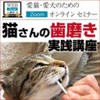 猫さんの歯磨き実践講座 Zoomセミナー