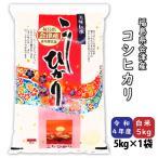 コシヒカリ 新米 お米 白米5kg 平成30年産 福島県会津産