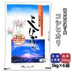 お米 米 コシヒカリ 白米30kg 小分け (5kg×6袋) 平成29年産 福島県中通り産