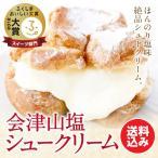 会津山塩のシュークリーム6個入 お歳暮/贈答品/ギフト/福島/送料込