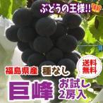 福島県産 巨峰(種なし) 2房セット 「ふくしまプライド。体感キャンペーン(果物/野菜)」