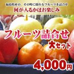 福島県産 フルーツ詰合せ 3,000円セット 「ふくしまプライド。体感キャンペーン(果物/野菜)」