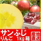 福島県産 サンふじ リンゴ 1kg箱 (3〜5玉入)