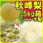 福島県 萱場産 秋峰 梨 約5kg箱  (5〜12玉)