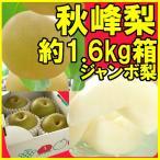 秋峰梨(約1.6kg箱約3〜4玉入)