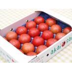 大玉トマト『桃太郎』詰め合わせ