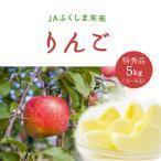 りんご 特秀品5kg 13〜16玉