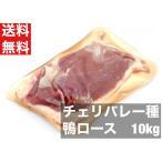 鴨肉 ロース 10kg箱売り 合鴨ロース 200-240g 送料無料  フィレ カナール チェリバレー種  業務用特価