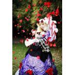 Yahoo!フルグレース豪華版 コスプレ衣装 東方Project コスプレ衣装 八雲 紫 コスプレ衣装 送料無料対象外商品