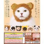 【12月予約】かわいい かわいい ねこくまちゃん キタンクラブ(カプセル)全6種セット