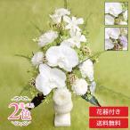 彗華純白の 胡蝶蘭 と薄緑色の小花のニュアンス アレンジ プリザーブドフラワー ギフト