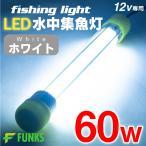 集魚灯 ホワイト 60w LED 集魚ライト 水中集魚灯 12v 白 ライト 照明 灯 夜灯 水中ライト 水中LEDライト led集魚灯 イカ釣り