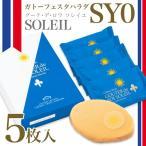 予約11月上旬より順次発送 ガトーフェスタハラダ ラスク ソレイユ ブロンドチョコレート グーテ・デ・ロワ SY0 5枚 簡易箱
