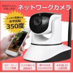 100万画質ネットワークカメラ 720P H.264 P2P防犯カメラ 64GBmicroSD対応 ワイヤレス 赤外線 暗視 遠隔操作 ベビーモニター 631GB