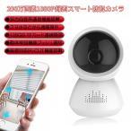 1080P 184度魚眼レンズIPカメラ 防犯カメラ 200万画素 ベビーモニター 暗視/動体検知/遠隔 360度監視 iPhone android 各スマホ対応 日本語アプリ 674W