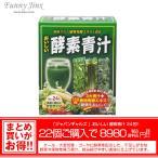おいしい酵素青汁 JAPANGALS 健康食品 サプリ 大麦若葉 ゴーヤ ケール 健康食品 美容 健康 青汁 酵素 日本製 ファニージンクス  TM015