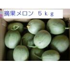 摘果メロン5kg【北海道 農家直送】