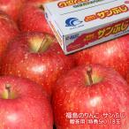 お歳暮 ギフト 福島のりんご サンふじ 1段(贈答用 特秀5k)18玉 リンゴ【ご予約販売 11月25日より順次出荷】箱が品質の証 おすすめ