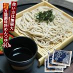 麺つゆ 本格めんつゆA 業務用 小袋お得な40食入  めんつゆ(うどん、そば)、ソーメンつゆ、天つゆ、煮物、和風だし