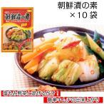 フタバ 朝鮮漬の素 25g×10袋