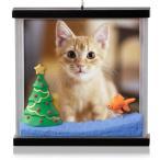 クリスマスオーナメント Hallmark 2014 Picture Purrfect Photo Holder Ornament ペット 写真 飾り クリスマス 猫