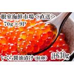 ふるさと納税 いくら醤油漬け(鮭卵)80g×8P(計640g) B-14010 北海道根室市