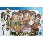 ふるさと納税 062-6-02 手軽に美味しく!塩干物うまいものセット 鹿児島県南九州市