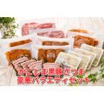 ふるさと納税 052-14 かごしま黒豚さつま豪華バラエティセット 鹿児島県南九州市