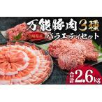 ふるさと納税 B63-191 万能豚肉バラエティーセット(スライス&切り落とし&ミンチ)合計2.6kg 宮崎県日南市