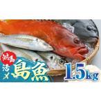 ふるさと納税 A-067 対馬活〆島魚セット 長崎県対馬市