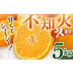 ふるさと納税 DP002岡村農園の不知火【5kg】<訳あり品 果物 柑橘> 高知県室戸市