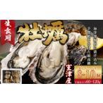ふるさと納税 AK014殻付き牡蠣旅する牡蠣プレミアムオイスター室戸海洋深層水 室津8〜10個入り 高知県室戸市