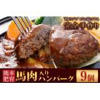 ふるさと納税 馬肉入り手作りハンバーグ(約150g×9個) 肉の宮本《45日以内に順次出荷(土日祝除く)》 熊本県長洲町