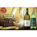 ふるさと納税 A31-001 白ワイン2本セット 750ml・720ml 山形県鶴岡市