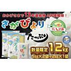 ふるさと納税 11年連続最高評価特A受賞米!令和2年産さがびより10kg (H015107) 佐賀県神埼市