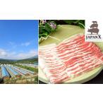 ふるさと納税 牧場直送JAPAN X 豚バラ2mmスライス/計2kg 宮城県蔵王町