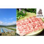 ふるさと納税 牧場直送JAPAN X 豚肩ロース2mmスライス/計2kg 宮城県蔵王町