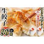 ふるさと納税 p8-105 甘熟豚南国スイート生餃子(96個) 鹿児島県志布志市