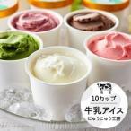 ふるさと納税 014AE01N.アイスクリーム詰め合わせ(10個) 兵庫県市川町
